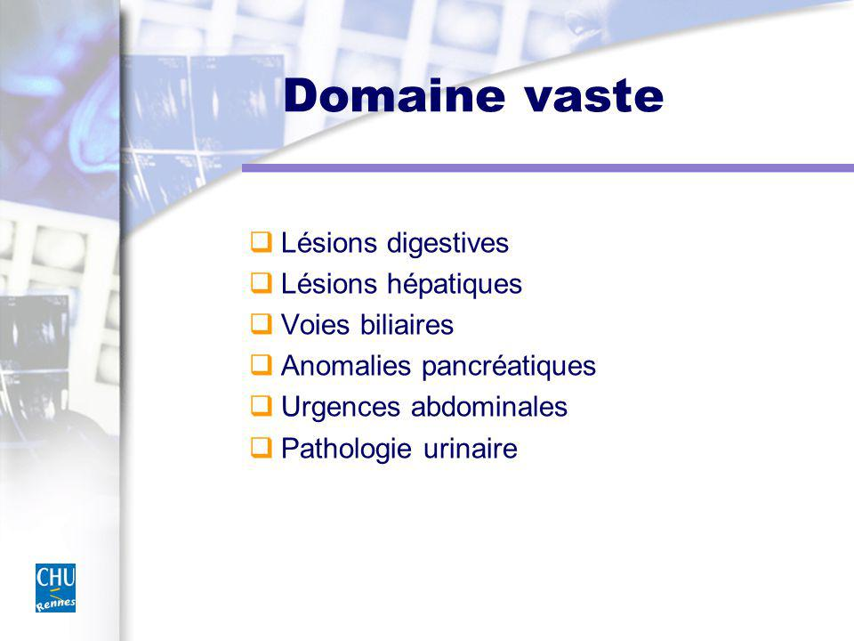 Domaine vaste Lésions digestives Lésions hépatiques Voies biliaires