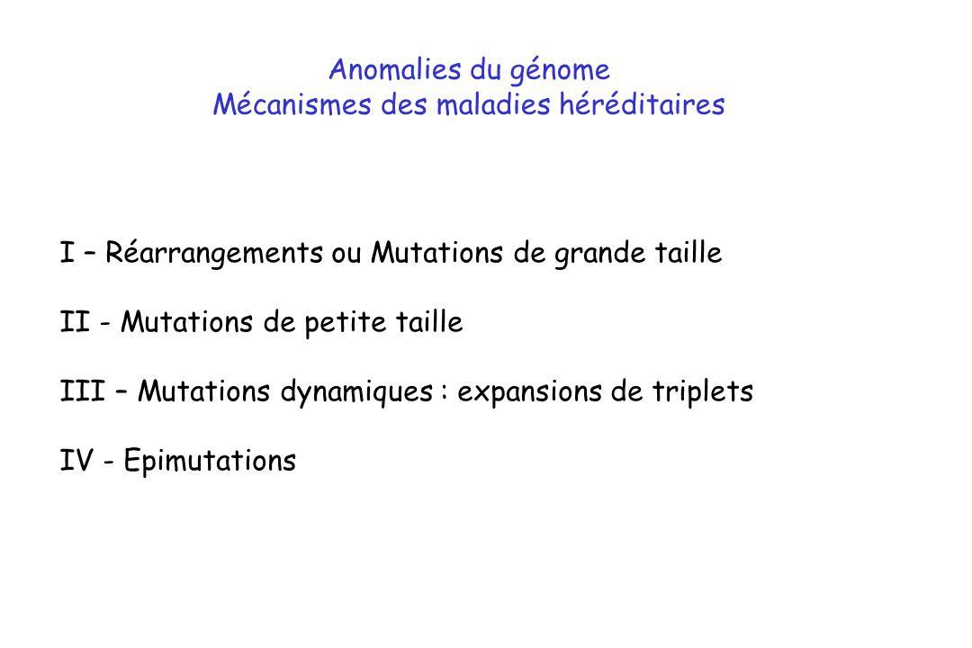 Mécanismes des maladies héréditaires