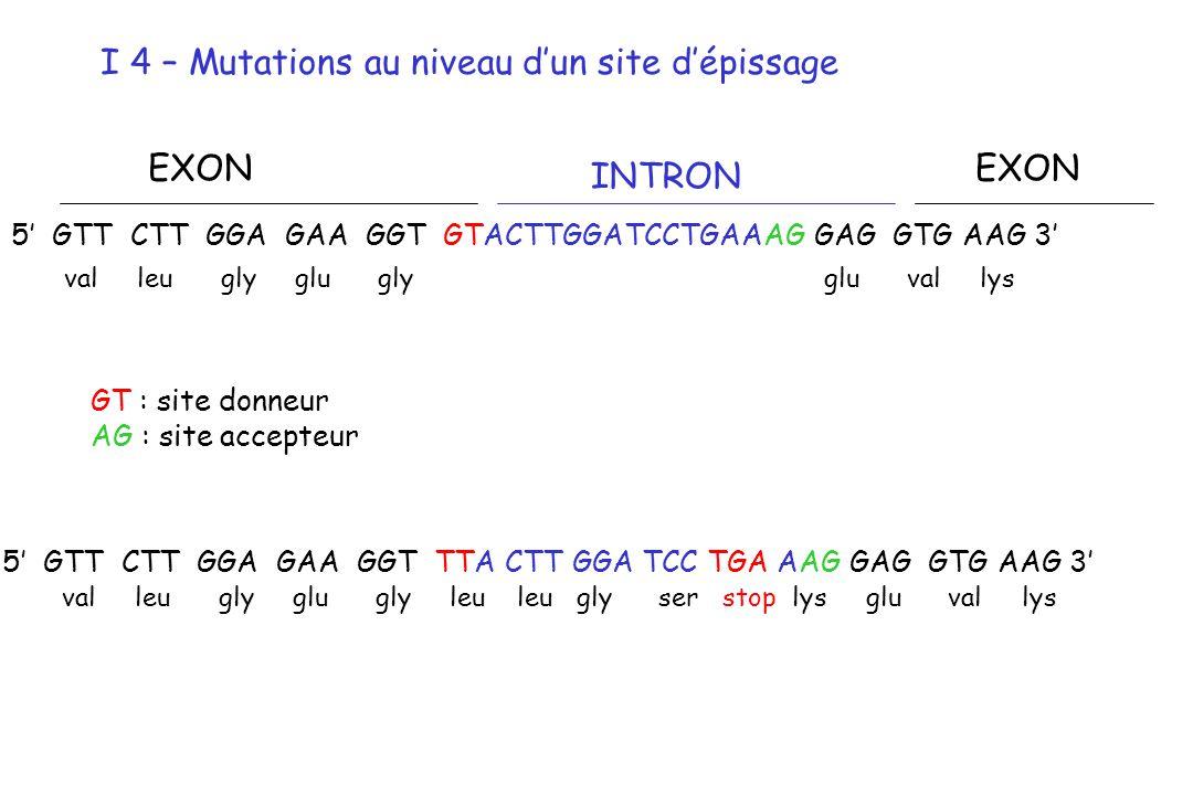 I 4 – Mutations au niveau d'un site d'épissage