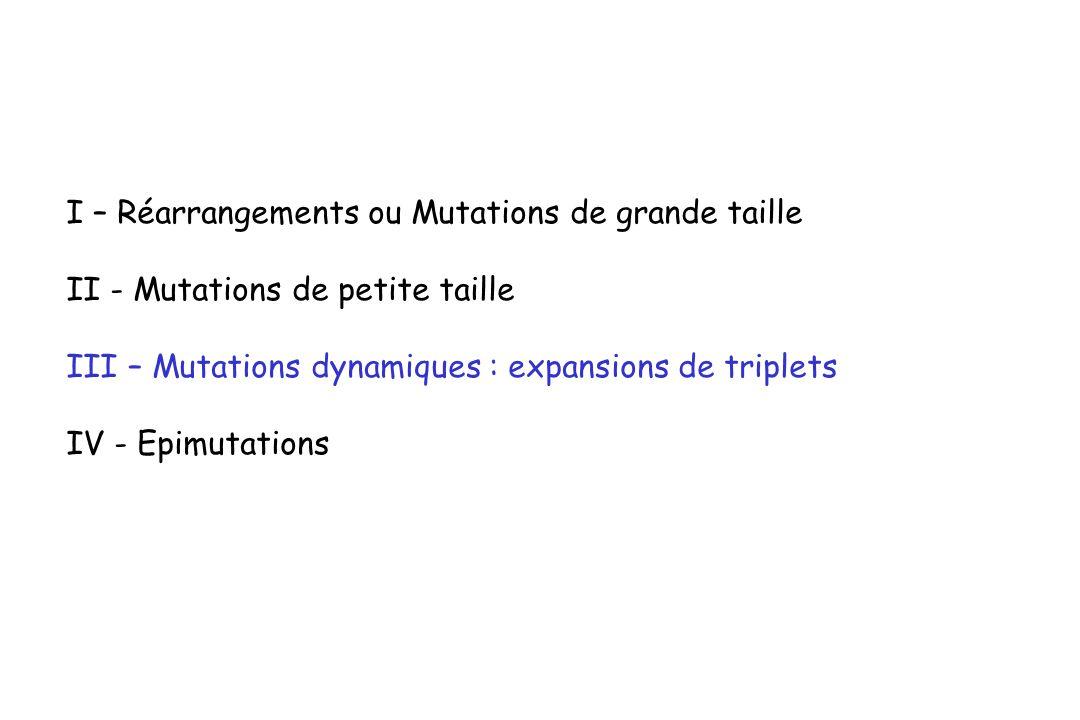 I – Réarrangements ou Mutations de grande taille