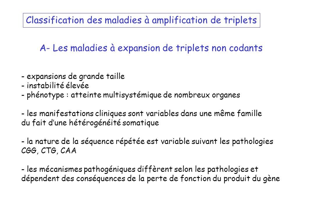 Classification des maladies à amplification de triplets