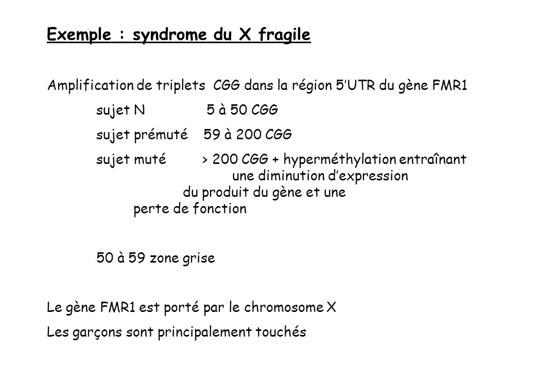 Exemple : syndrome du X fragile