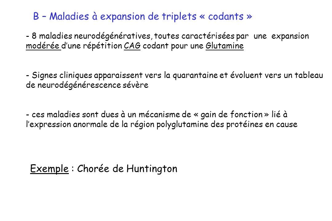 B – Maladies à expansion de triplets « codants »