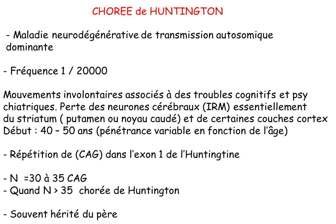 CHOREE de HUNTINGTON - Maladie neurodégénérative de transmission autosomique. dominante. - Fréquence 1 / 20000.