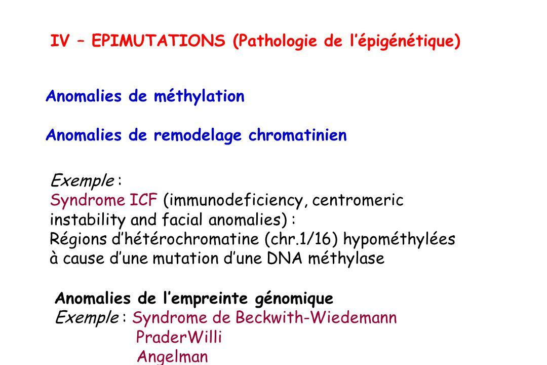 IV – EPIMUTATIONS (Pathologie de l'épigénétique)