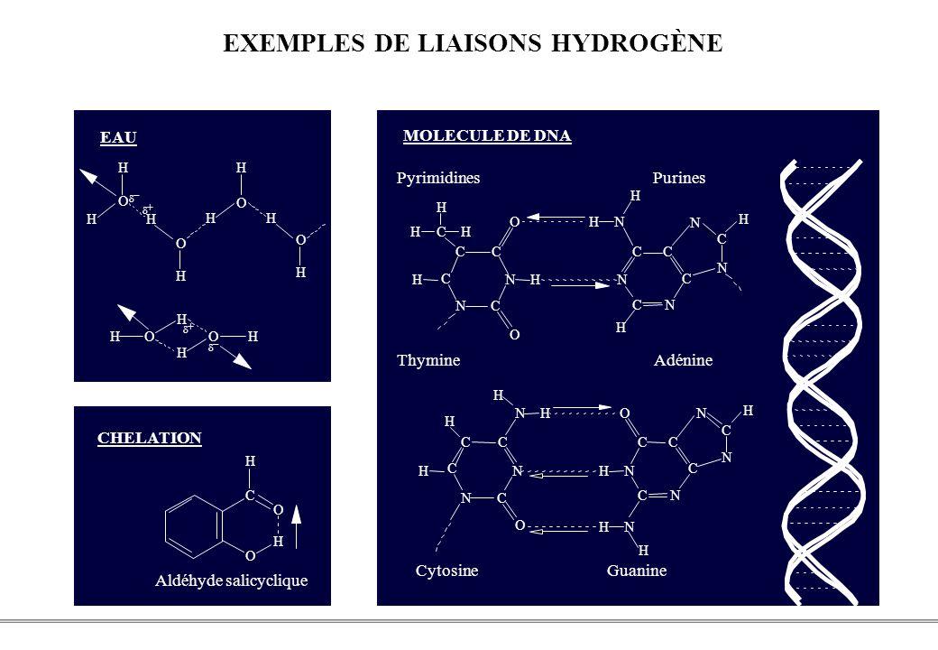 EXEMPLES DE LIAISONS HYDROGÈNE
