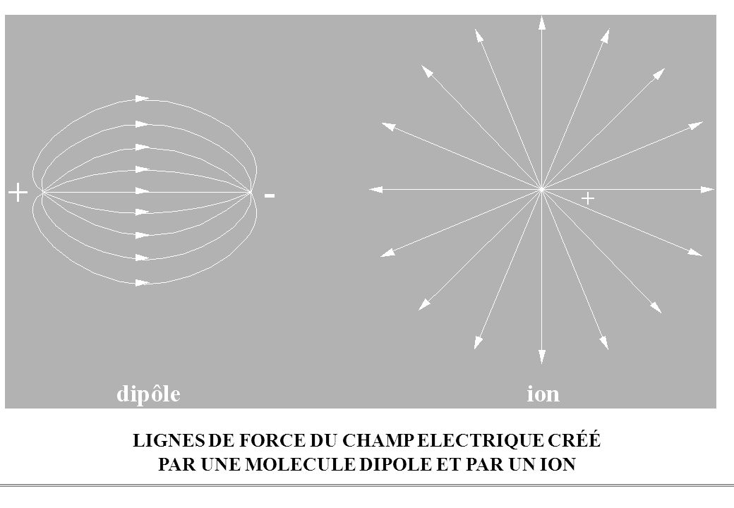 LIGNES DE FORCE DU CHAMP ELECTRIQUE CRÉÉ