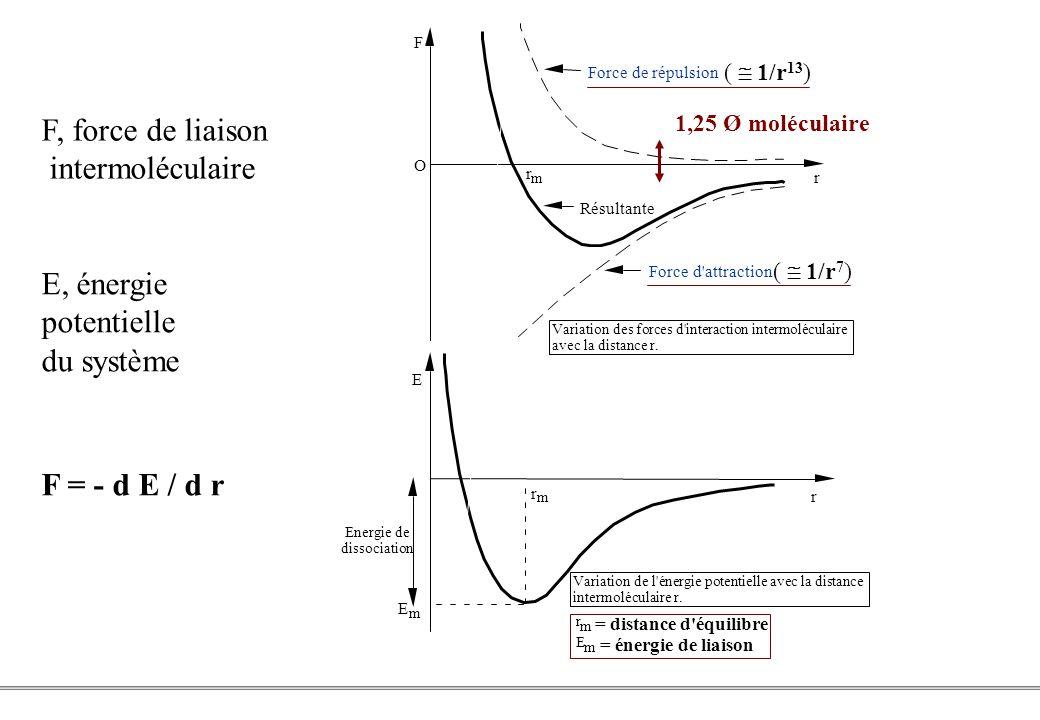 F, force de liaison intermoléculaire E, énergie potentielle du système