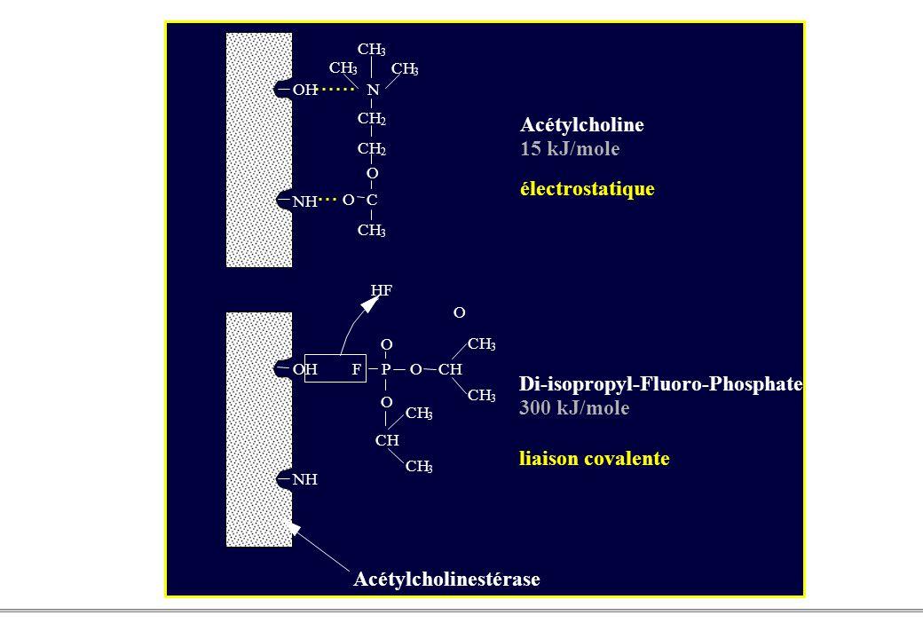 Acétylcholinestérase Acétylcholine 15 kJ/mole