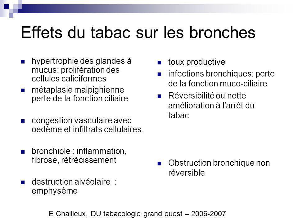 Effets du tabac sur les bronches