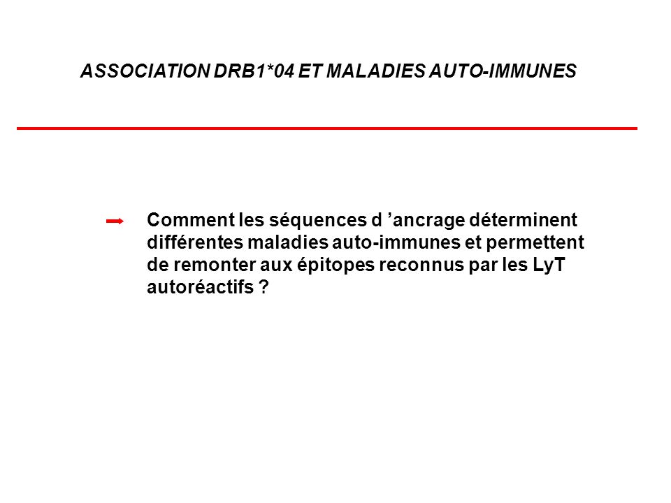 ASSOCIATION DRB1*04 ET MALADIES AUTO-IMMUNES