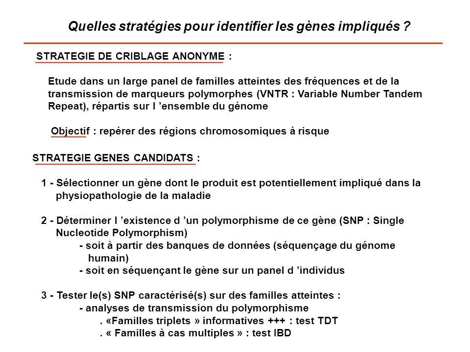 Quelles stratégies pour identifier les gènes impliqués
