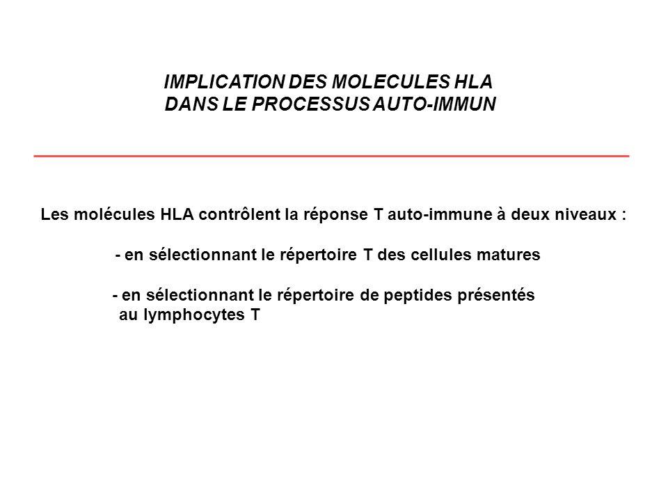IMPLICATION DES MOLECULES HLA DANS LE PROCESSUS AUTO-IMMUN