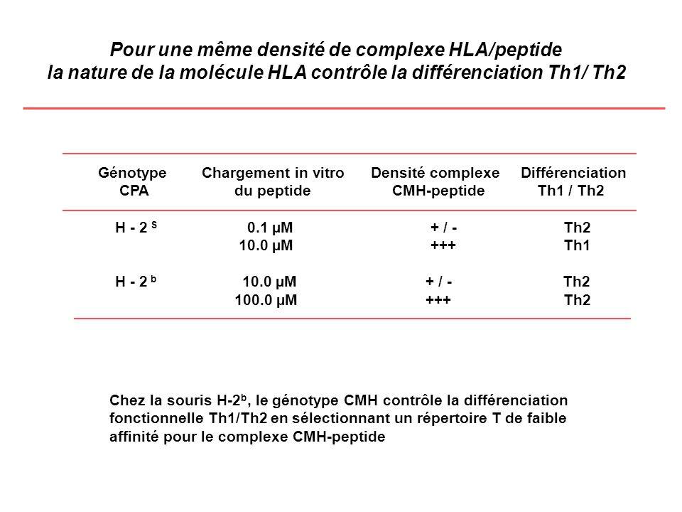 Pour une même densité de complexe HLA/peptide
