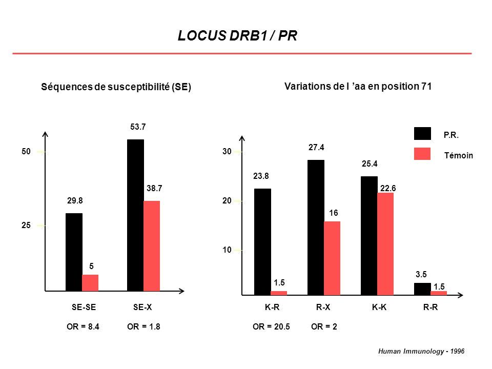 LOCUS DRB1 / PR Séquences de susceptibilité (SE)