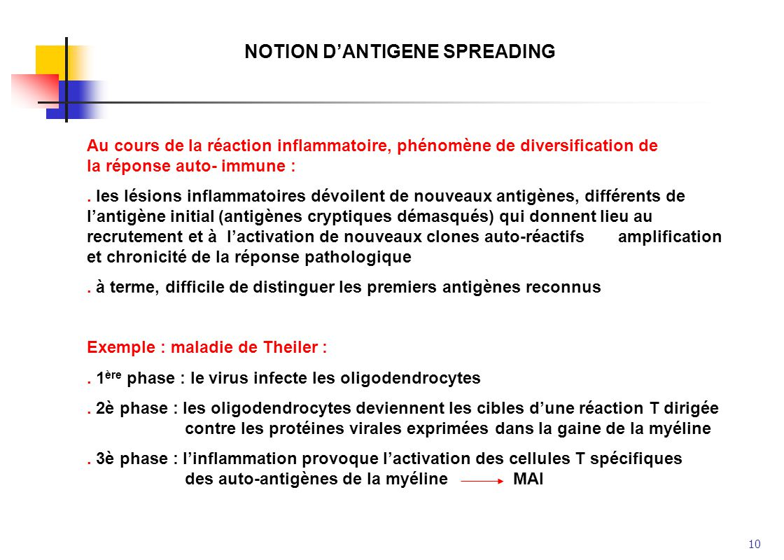 NOTION D'ANTIGENE SPREADING