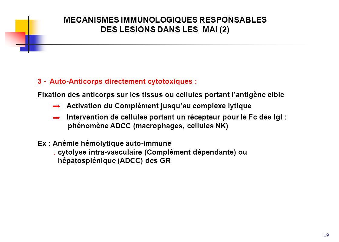 MECANISMES IMMUNOLOGIQUES RESPONSABLES DES LESIONS DANS LES MAI (2)