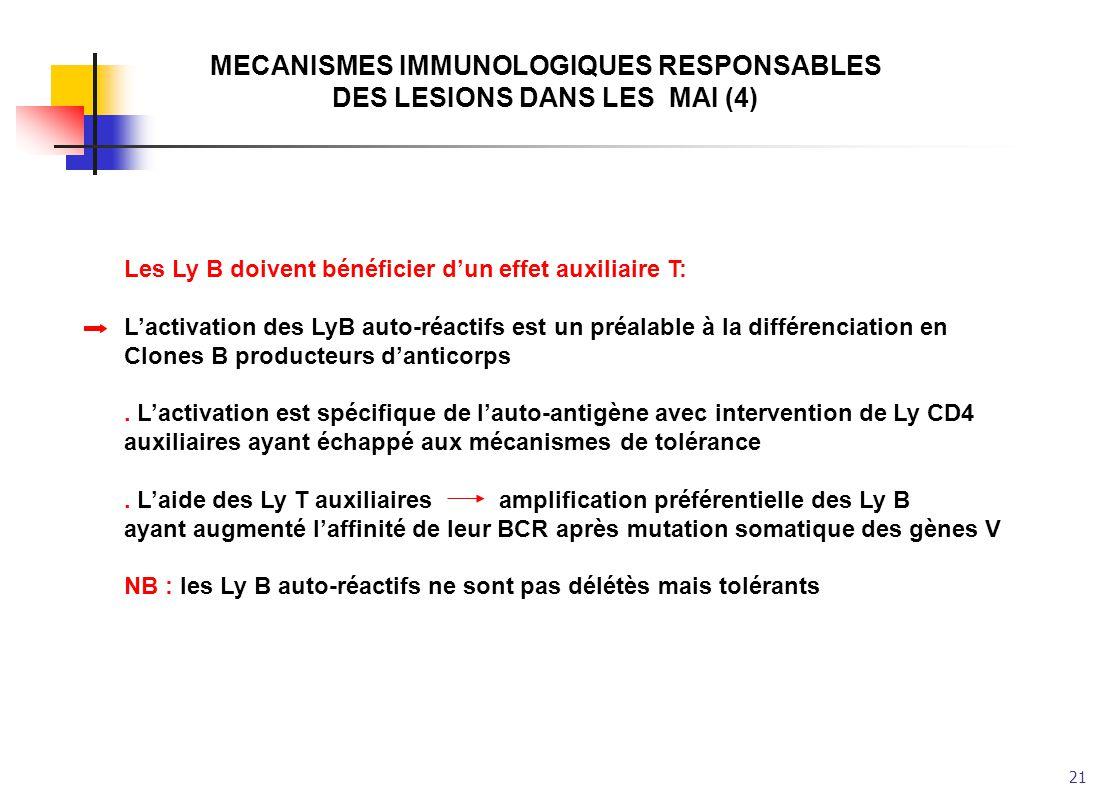 MECANISMES IMMUNOLOGIQUES RESPONSABLES DES LESIONS DANS LES MAI (4)