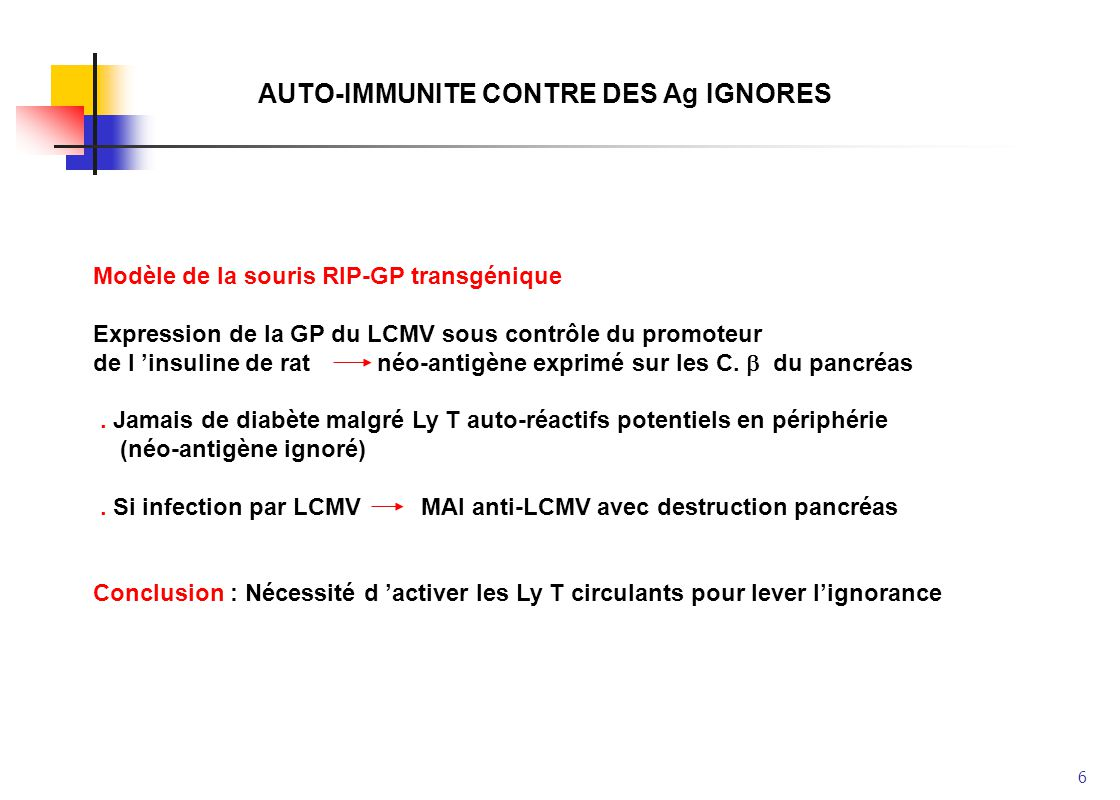 AUTO-IMMUNITE CONTRE DES Ag IGNORES