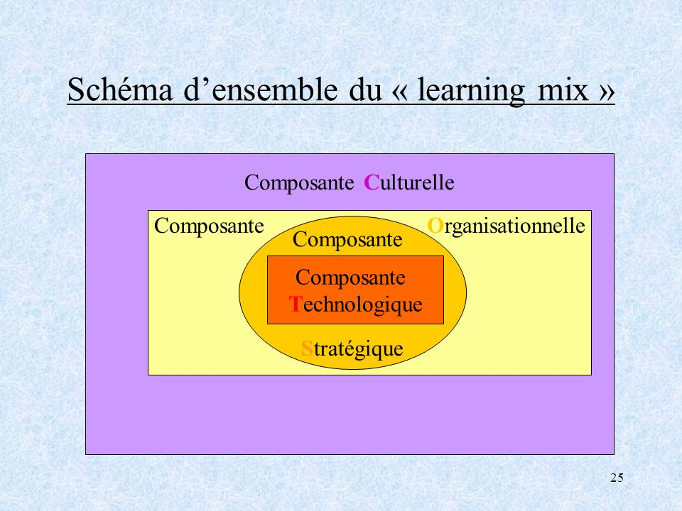 Schéma d'ensemble du « learning mix »
