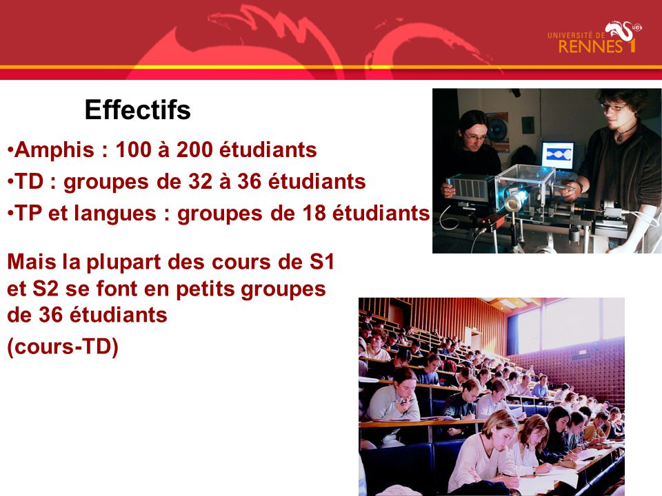 Effectifs Amphis : 100 à 200 étudiants