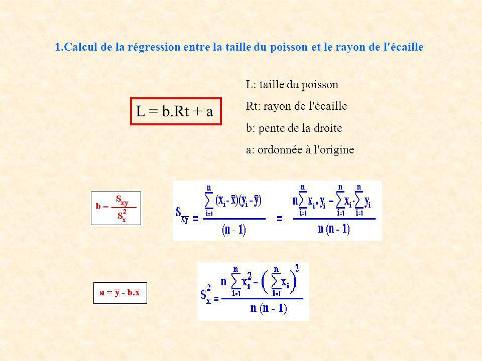 1.Calcul de la régression entre la taille du poisson et le rayon de l écaille