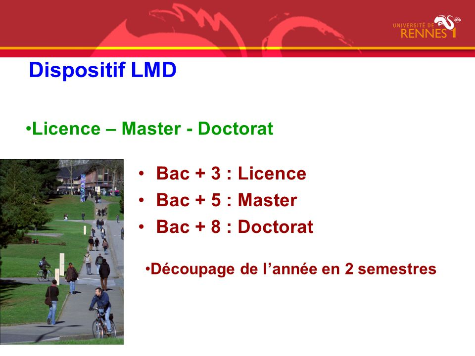 Dispositif LMD Licence – Master - Doctorat Bac + 3 : Licence