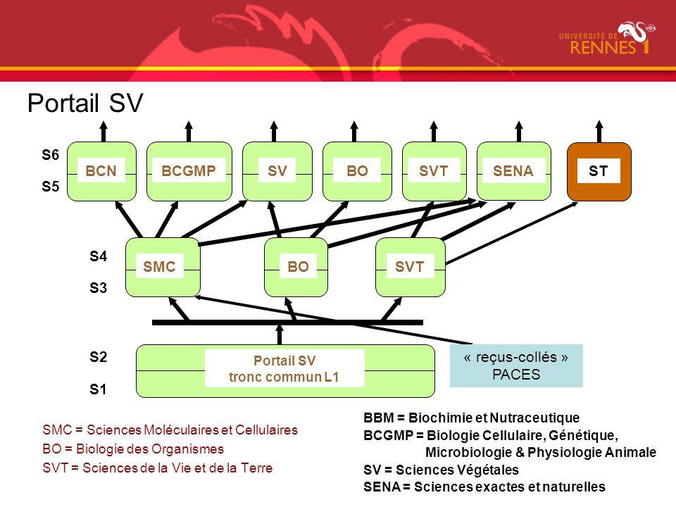 Portail SV S6 BCN BCGMP SV BO SVT SENA ST S5 S4 SMC BO SVT S3 S2