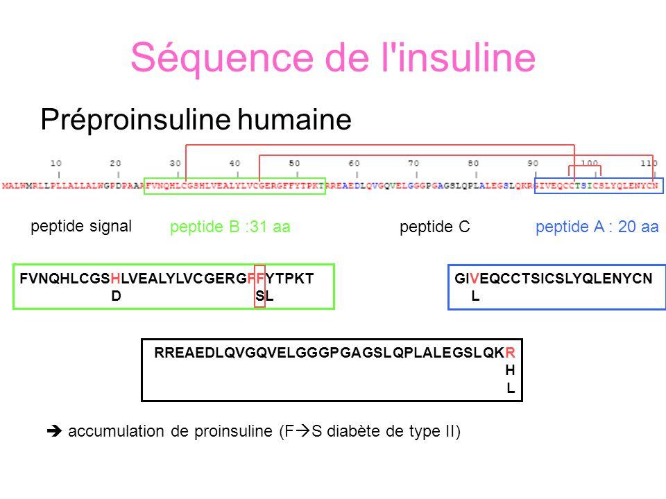 Séquence de l insuline Préproinsuline humaine peptide signal