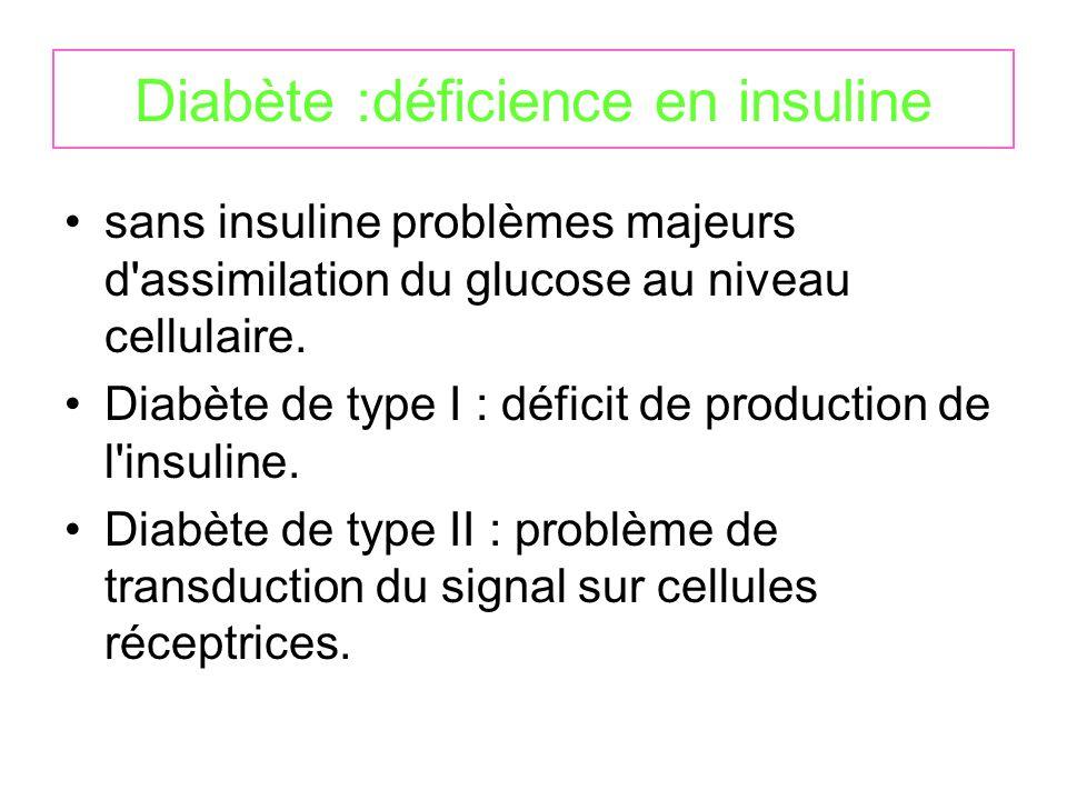 Diabète :déficience en insuline