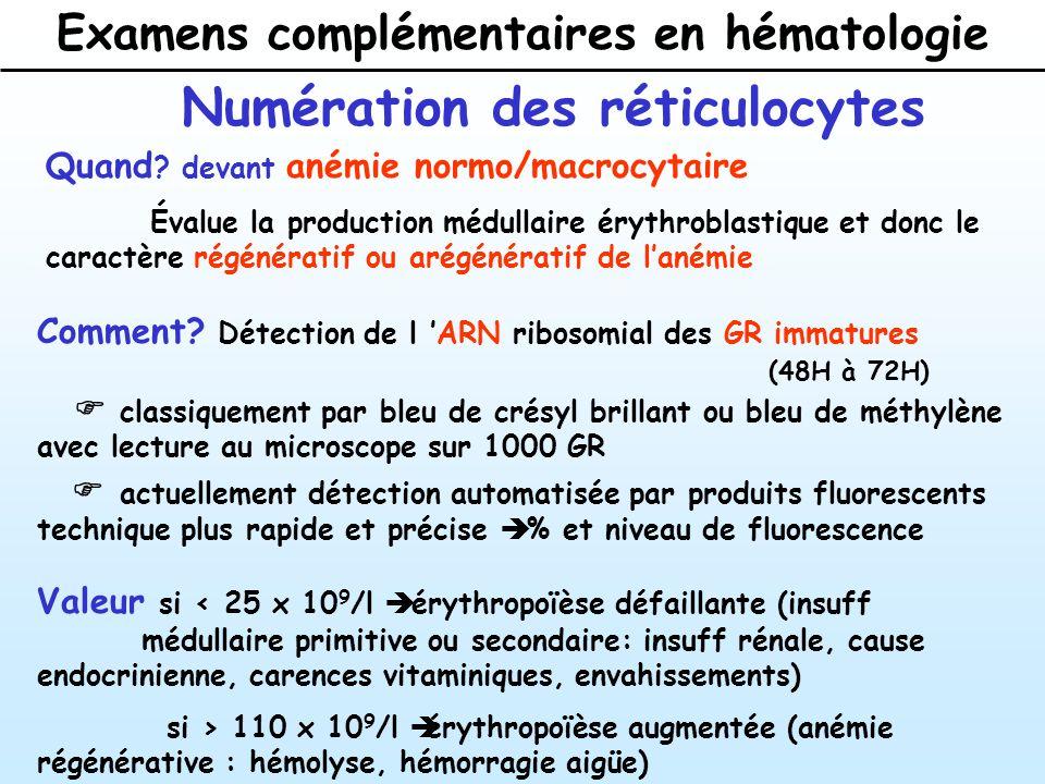 Examens complémentaires en hématologie Numération des réticulocytes