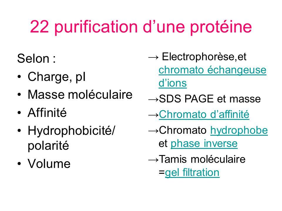 22 purification d'une protéine