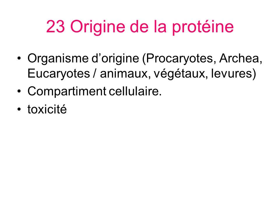 23 Origine de la protéine Organisme d'origine (Procaryotes, Archea, Eucaryotes / animaux, végétaux, levures)