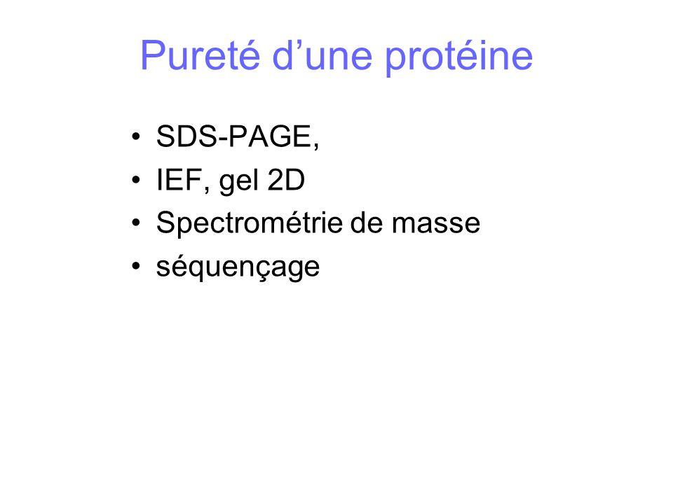 Pureté d'une protéine SDS-PAGE, IEF, gel 2D Spectrométrie de masse