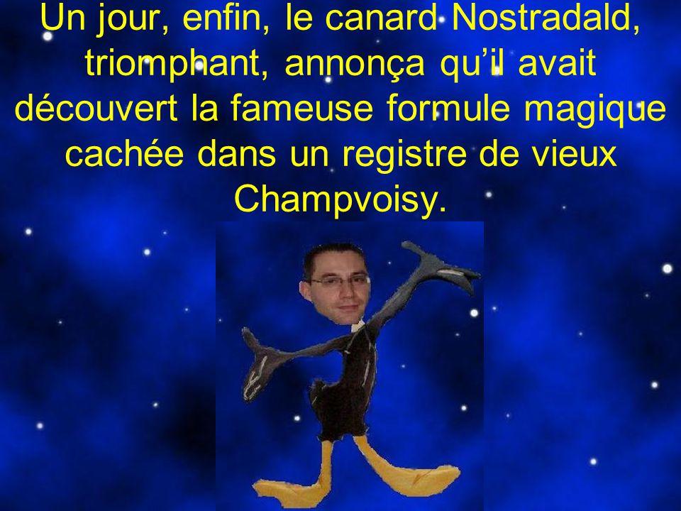 Un jour, enfin, le canard Nostradald, triomphant, annonça qu'il avait découvert la fameuse formule magique cachée dans un registre de vieux Champvoisy.