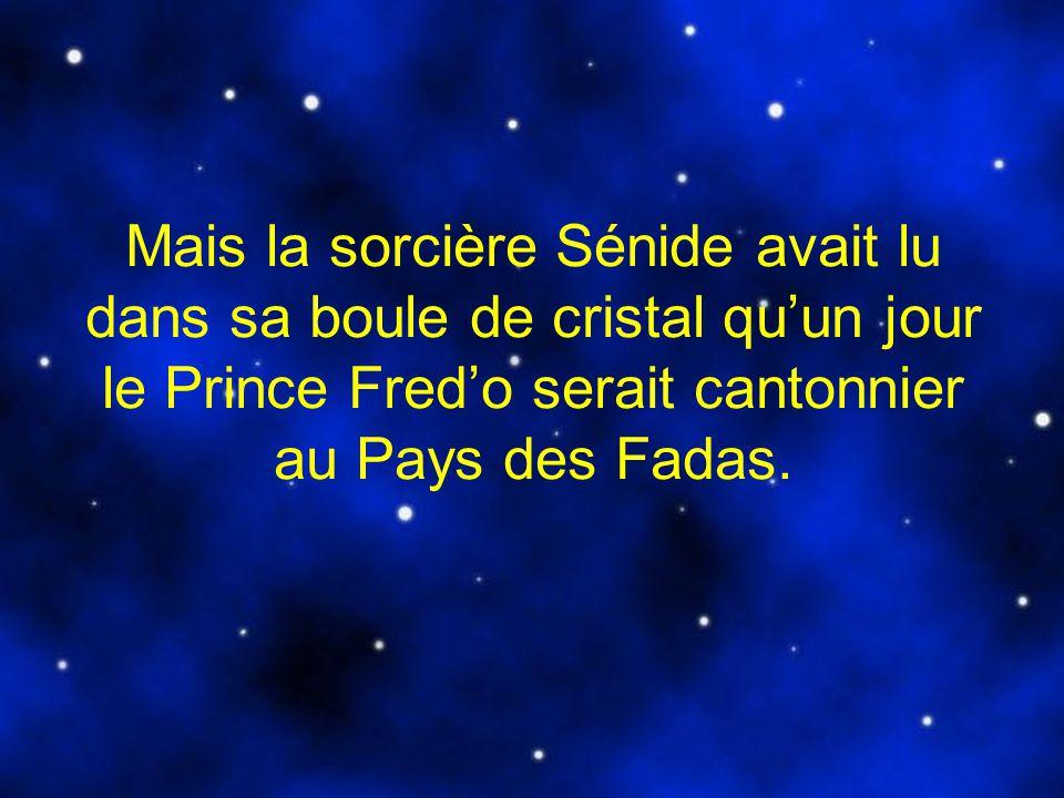 Mais la sorcière Sénide avait lu dans sa boule de cristal qu'un jour le Prince Fred'o serait cantonnier au Pays des Fadas.