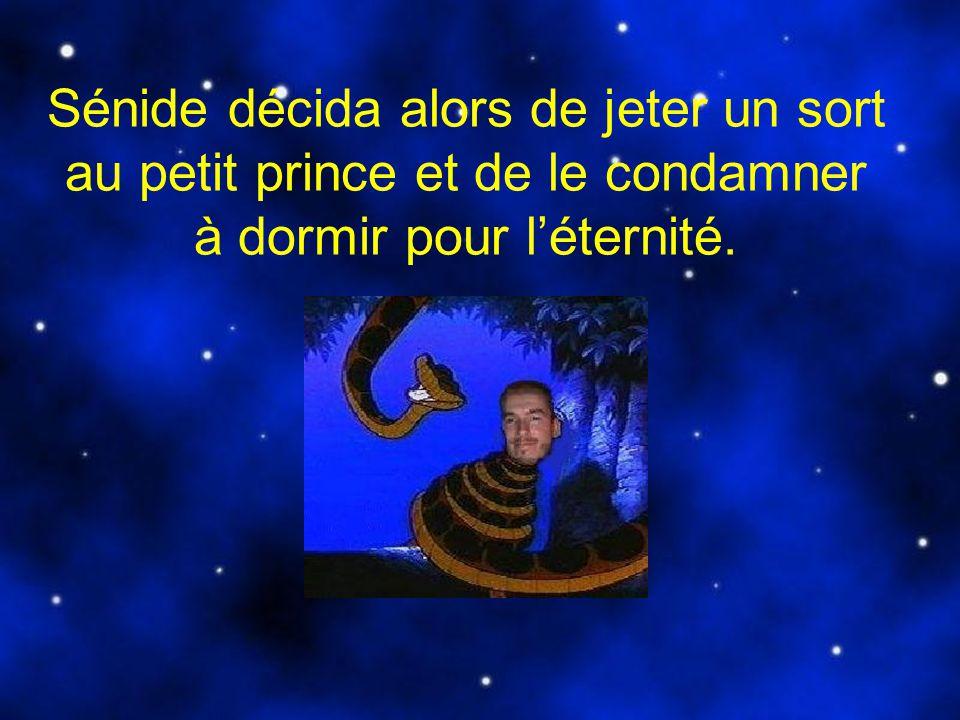 Sénide décida alors de jeter un sort au petit prince et de le condamner à dormir pour l'éternité.