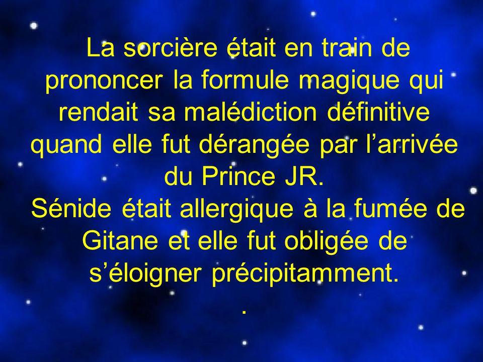 La sorcière était en train de prononcer la formule magique qui rendait sa malédiction définitive quand elle fut dérangée par l'arrivée du Prince JR.