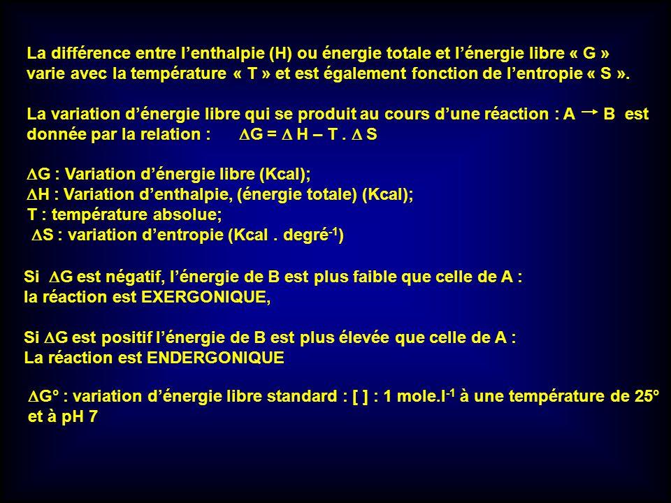 La différence entre l'enthalpie (H) ou énergie totale et l'énergie libre « G »