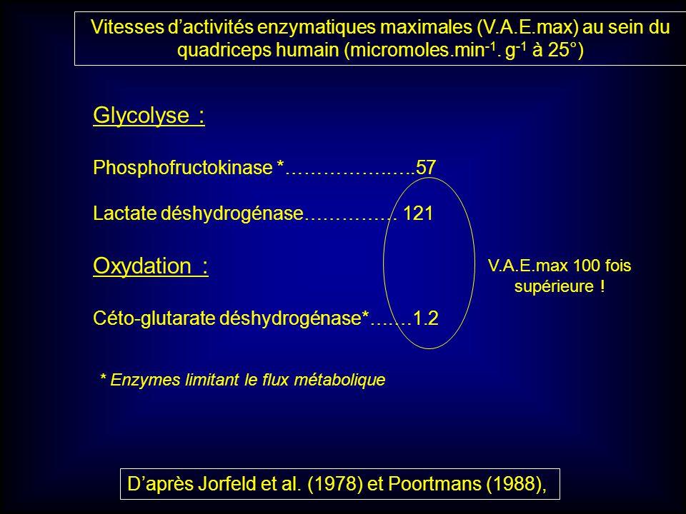 Glycolyse : Oxydation :