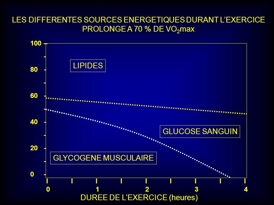 LES DIFFERENTES SOURCES ENERGETIQUES DURANT L'EXERCICE