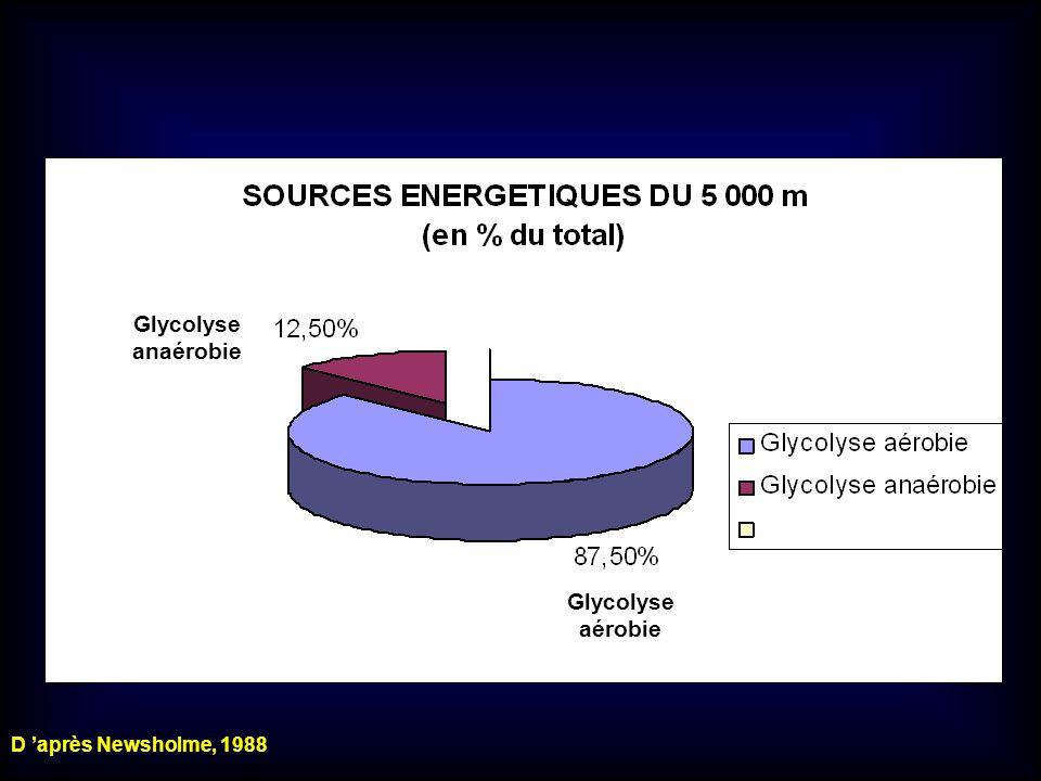 Glycolyse anaérobie Glycolyse aérobie