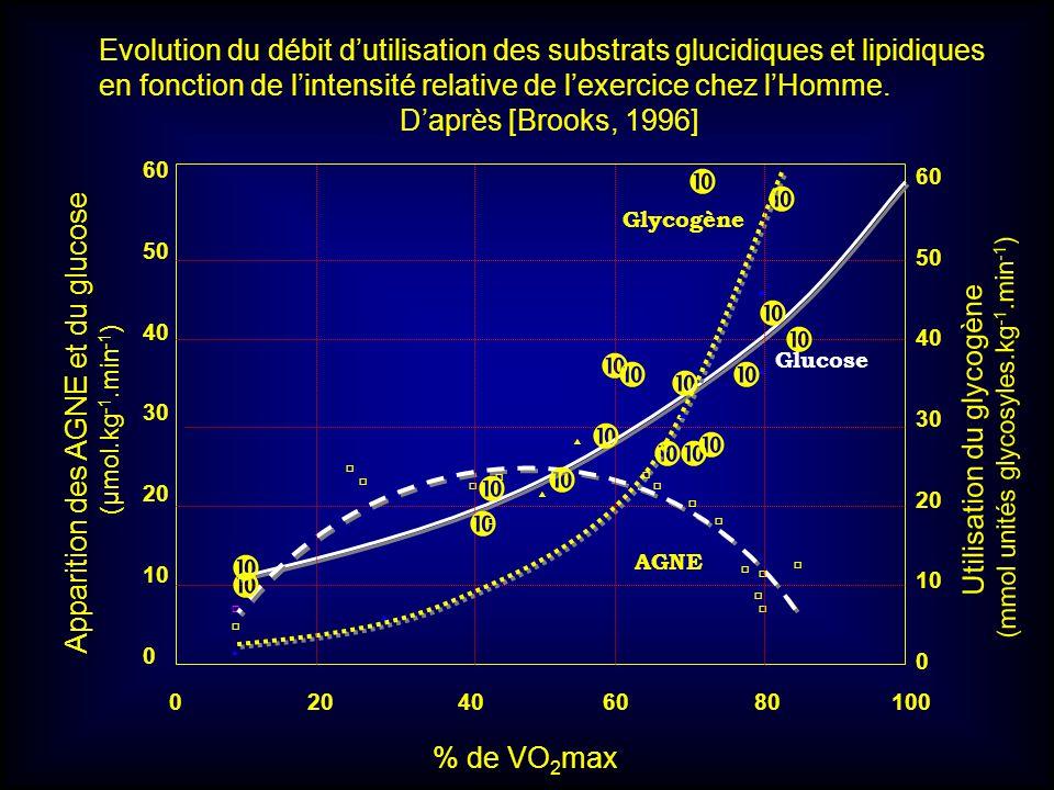 Evolution du débit d'utilisation des substrats glucidiques et lipidiques