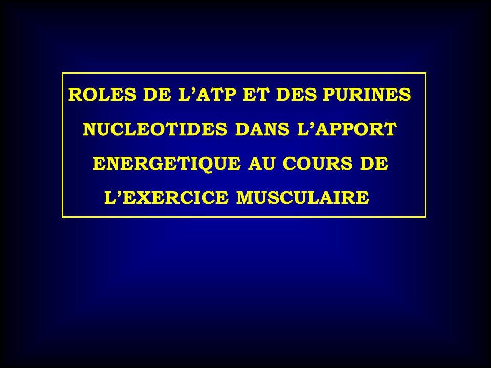 NUCLEOTIDES DANS L'APPORT ENERGETIQUE AU COURS DE