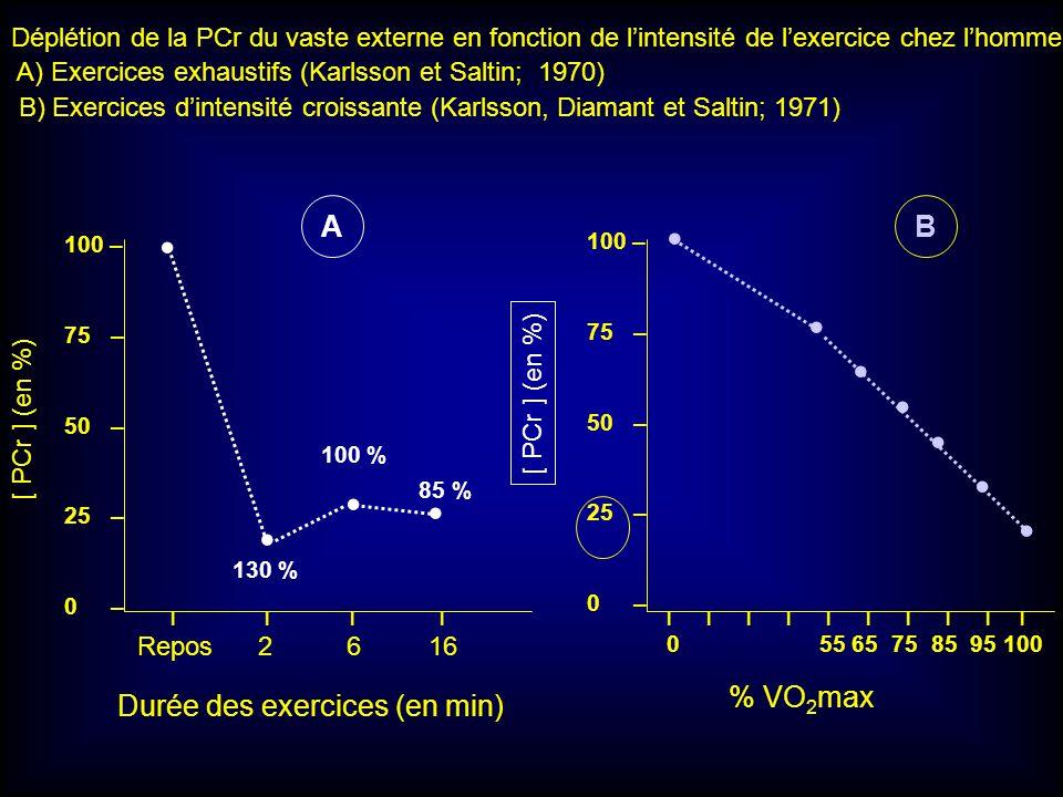 • • • • • • • • • • • A B % VO2max Durée des exercices (en min)