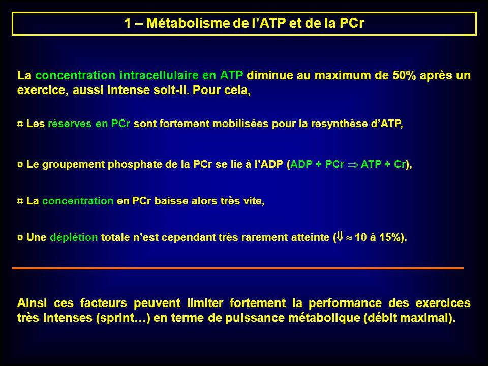 1 – Métabolisme de l'ATP et de la PCr