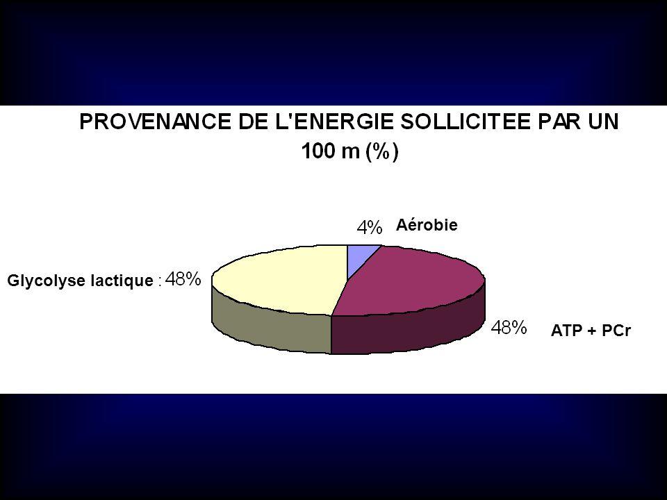 Aérobie Glycolyse lactique : ATP + PCr