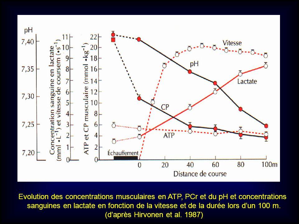 (d'après Hirvonen et al. 1987)