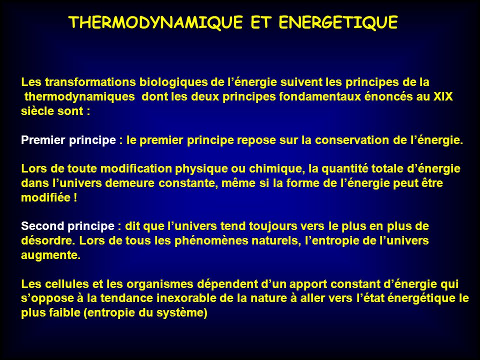 THERMODYNAMIQUE ET ENERGETIQUE