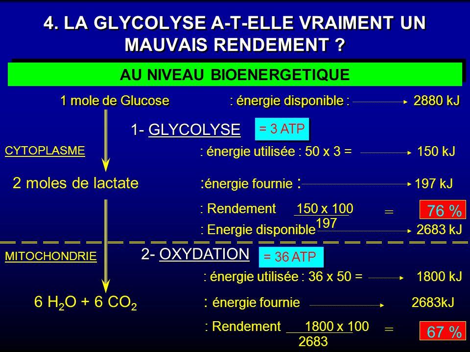 4. LA GLYCOLYSE A-T-ELLE VRAIMENT UN MAUVAIS RENDEMENT